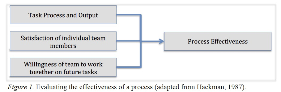 Evaluating the effectiveness of a process